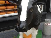 Delft Cheese!
