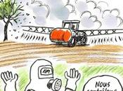Pestisuicide