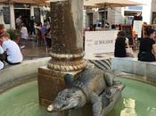 Crocodile carte postale Nîmes