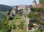 Dégustation domaine Jean Macle Chateau-Chalon (39)