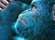 planète singes suprématie