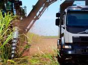 Volvo, camion autonome pour récoltes