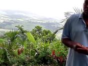 agriculteur Martinique
