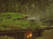 EVASION cabane suédoise perdu dans foret depuis