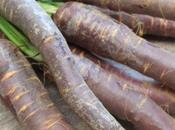 carotte bicolore dans drôle carpaccio