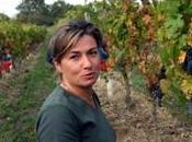 Breton vins Loire Naturels