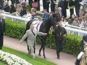 Longchamp 26-10-08