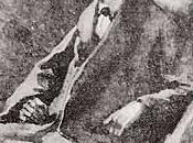 Pages nocturnes (20) Conan Doyle