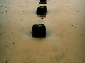 Saint-Malo, pieds dans l'eau