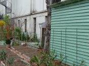 jardin habitants Palais Tokyo