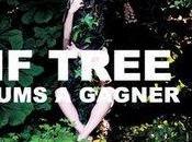 Concours Alif Tree
