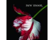 film Moon arrêté Stephenie Meyer accusée plagiat