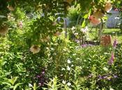 """jardin """"Mon labeur"""""""