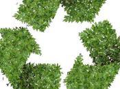spécialiste logiciel transport innove dans domaine green supply chain