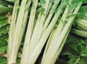 légumes disparu…