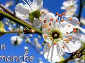 petite sortie Iles Boucherville
