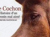 Histoire Cochon