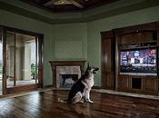 Trop regarder télé rend