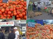 fête tomate, j'adore!