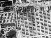 Témoigner après Auschwitz