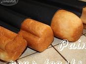 Pain pour moules toasts