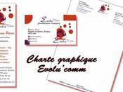 charte graphique d'Evolu'comm