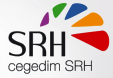 Seyfert fait choix progiciel TeamsRH Cegedim l'intégration nouveau système gestion confiée Consultencia