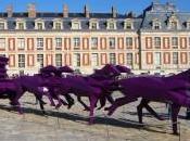 """carosse"" Xavier Veilhan Versailles partir septembre"
