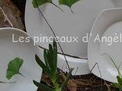 décor feuilles Gingko