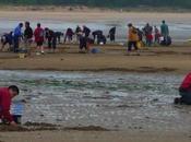 Marée d'équinoxe plage Boyardville