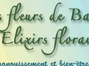 Ateliers fleurs bach