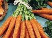 Macreuse braisée carottes nouvelles