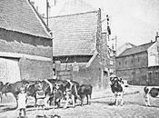 Vente démonstrations tracteurs agricoles 1921.
