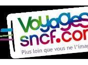 Rendez-vous Voyages-sncf.com pour trouver billet train cher