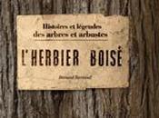 L'herbier boisé Bernard Bertrand, éditions Plume Carotte