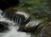 Sauver riviere