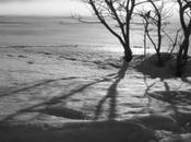 traces dans neige