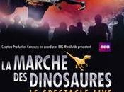 marche dinosaures