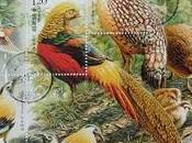 Magnifiques oiseaux Chine