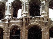 Arles sous Neige Janvier 2010