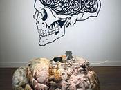 Planète Cerveau Musée Denys Puech