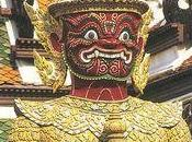 cafards Thaïlande Norvège choc cultures