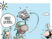 Alger-Bamako crise