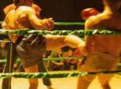 Boxe Thaïlandaise.