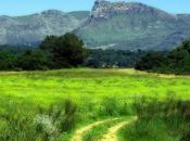 L'IMAGE JOUR: Paysage Majorque
