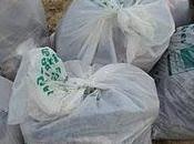 déchets collectés