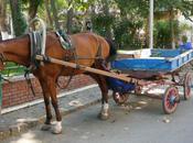 easyjet, train, voiture comment rendre Bandol
