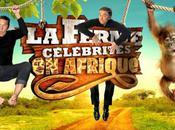 Ferme Célébrités Afrique résultats votes cachés