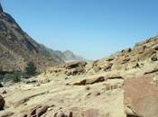 EGYPTE DESERT SINAI MONASTERE CATHERINE