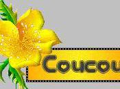 oeufs cocottes camembert ciboulette.